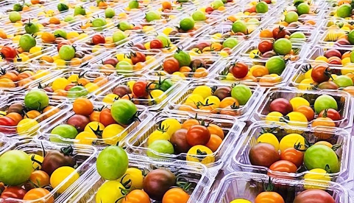 調達から収穫された作物の販売までトータルにサポート